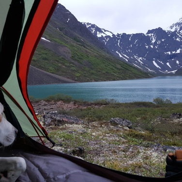 Atlas in tent, Symphony Lake, Eagle River Alaska