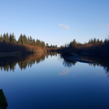 Reflections on water - Cordova Alaska
